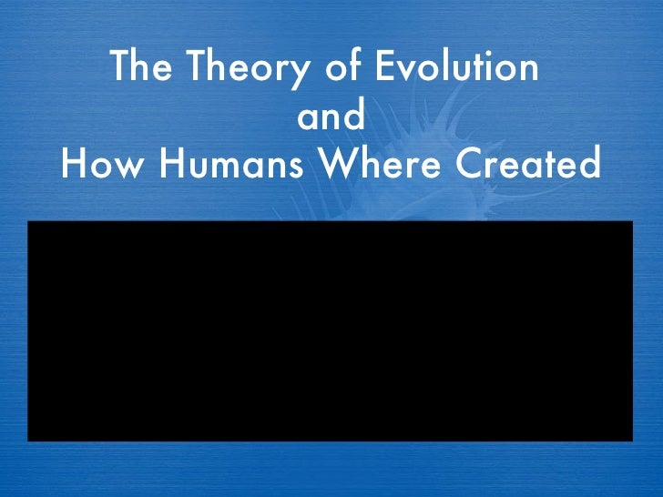 The Theory of Evolution  and How Humans Where Created
