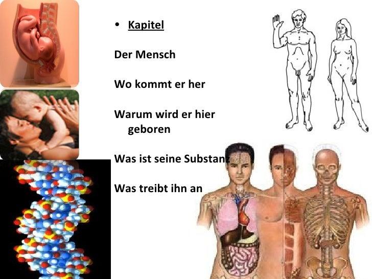 <ul><li>Kapitel   </li></ul><ul><li>Der Mensch </li></ul><ul><li>Wo kommt er her </li></ul><ul><li>Warum wird er hier gebo...