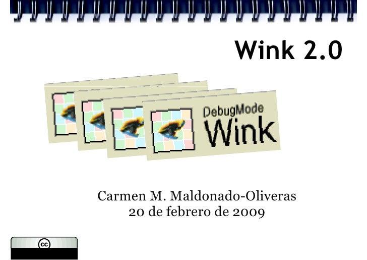 Wink 2.0     Carmen M. Maldonado-Oliveras     20 de febrero de 2009