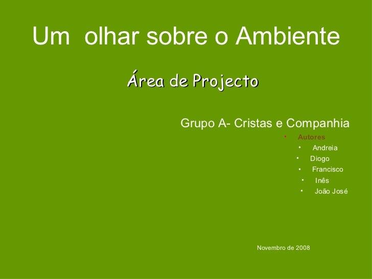 Um  olhar sobre o Ambiente <ul><li>Grupo A- Cristas e Companhia </li></ul><ul><li>Autores  </li></ul><ul><li>Andreia  </li...