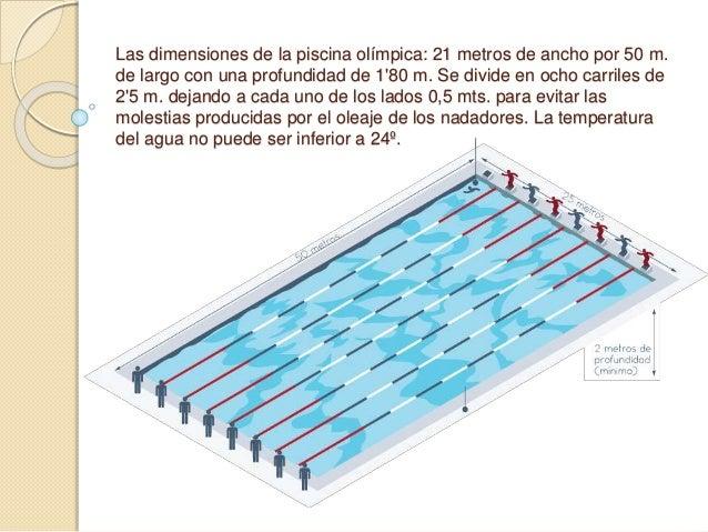 Nataci n origen y importancia - Medidas de una piscina olimpica ...