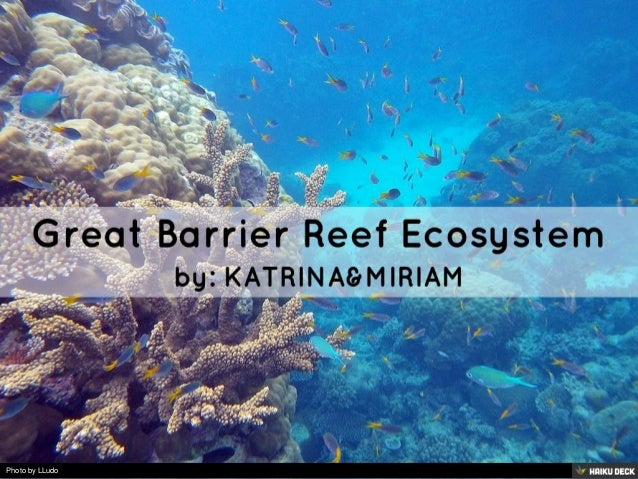 Stress on ecosystems great barrier reef