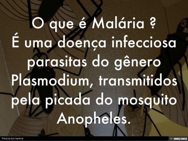 Malária Slide 2