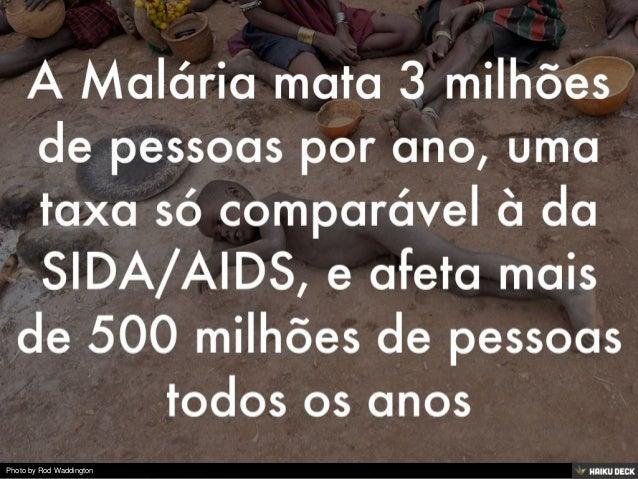 Malária Slide 3