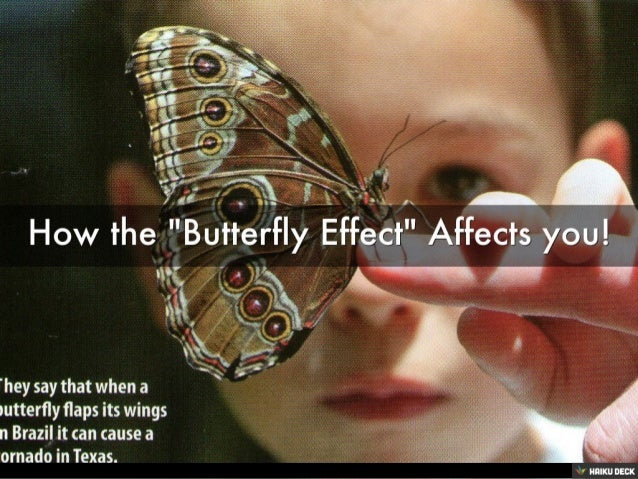How the &quot;Butterfly Effect&quot; Affects you!<br>