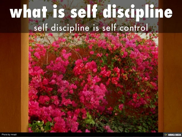 what is self discipline <br>self discipline is self control<br>