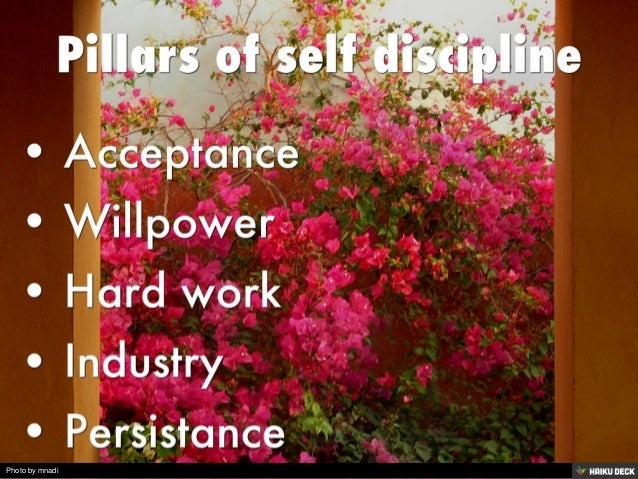 Pillars of self discipline  <br>• Acceptance <br>• Willpower <br>• Hard work <br>• Industry <br>• Persistance<br>