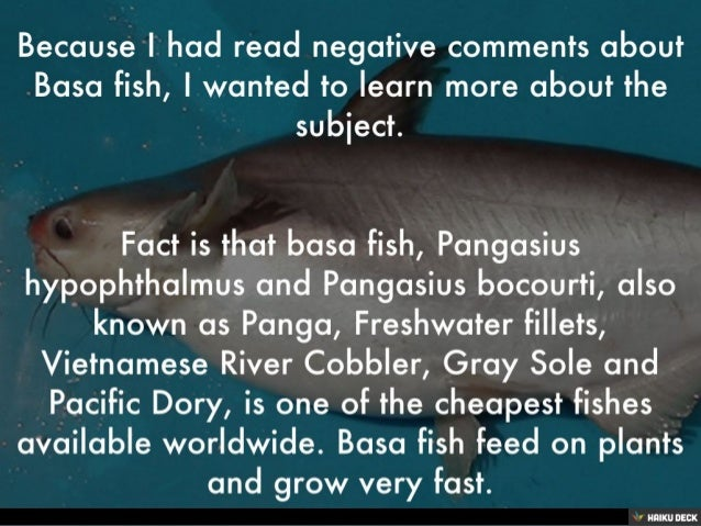 Is basa fish safe to eat for Feed and grow fish free no download