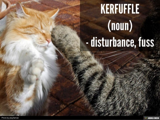 Ten of My Favorite Words (as Illustrated by Cats) Slide 2