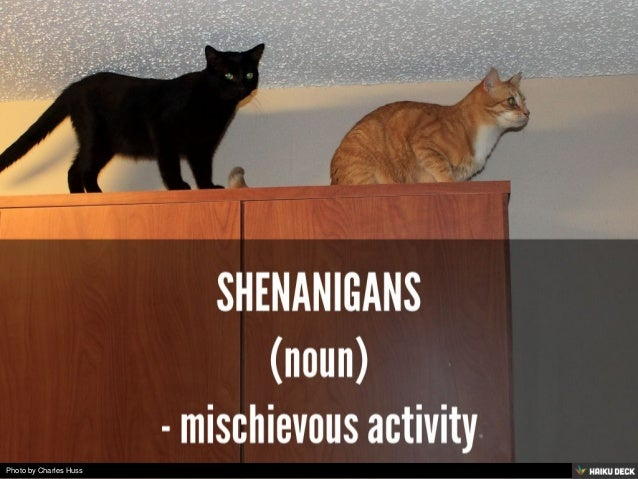 Ten of My Favorite Words (as Illustrated by Cats) Slide 3