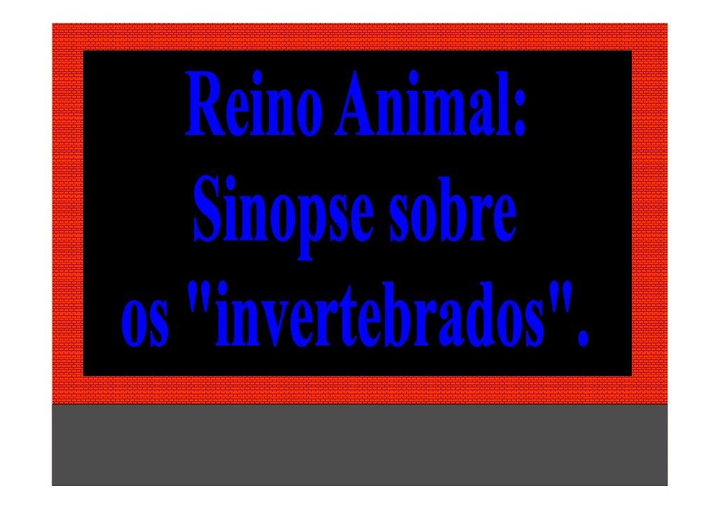 Prof. Albano Novaes - Reino   1            Animal