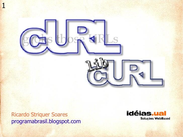 Ricardo Striquer Soares programabrasil.blogspot.com