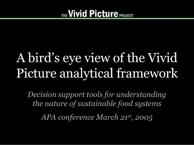 A bird's eye view of the Vivid Picture analytical framework