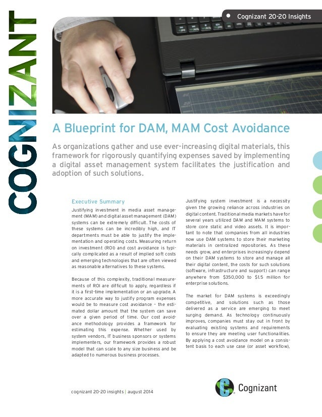 A blueprint for dam mam cost avoidance a blueprint for dam mam cost avoidance as organizations gather and use ever increasing malvernweather Gallery