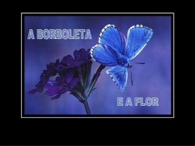 Certa vez, um homem pediu a Deus uma flor... ...e uma borboleta. .