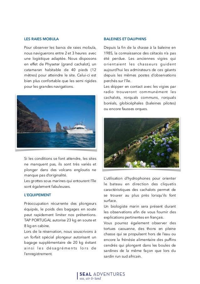 Açores Safari Mégafaune et Exploration de l'archipel (2).pdf Slide 3