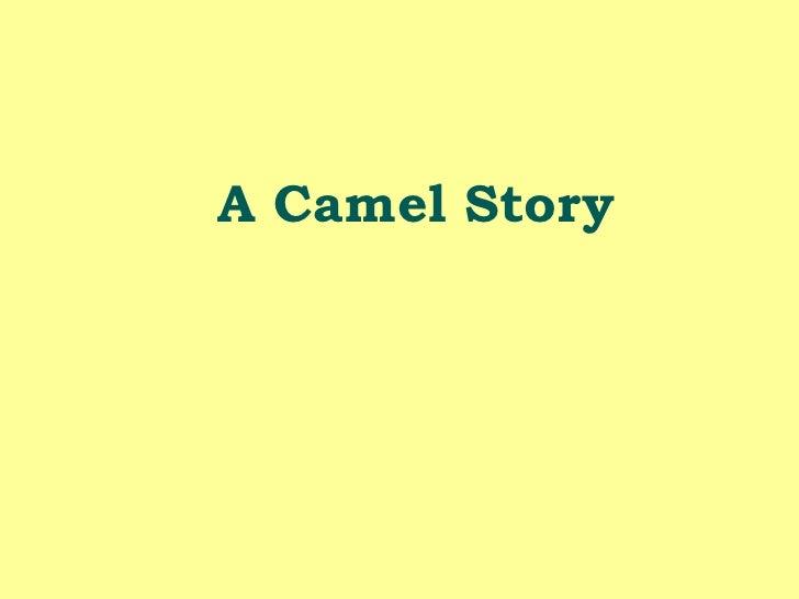 A Camel Story<br />