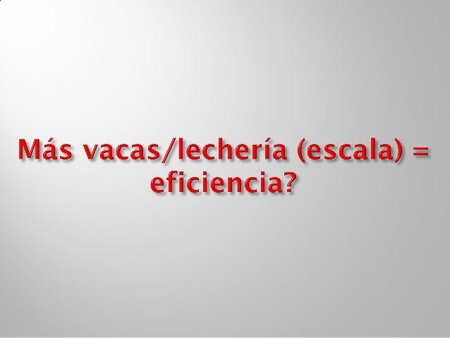 (Castillo, A.R., 2009)
