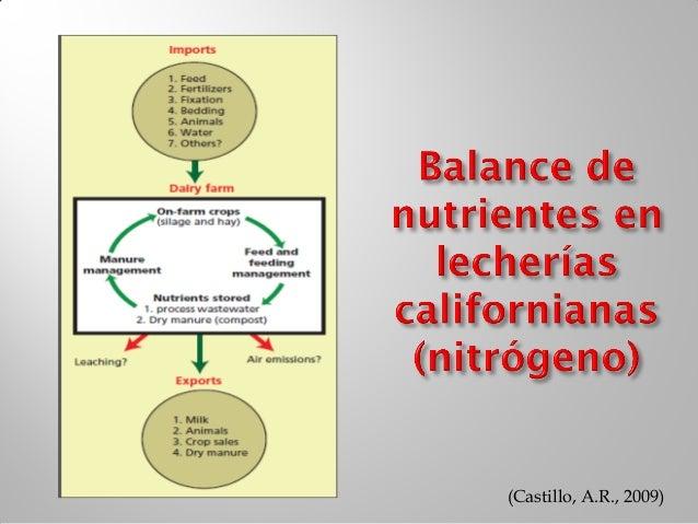    Estamos alimentando minerales correctamente?   Información sobre balance de minerales es escasa   Cual es el impacto...