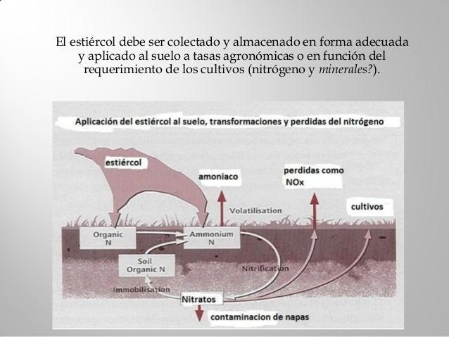 Objetivos:1) Comparar consumo y requerimientos(NRC, 2001) de minerales2) Evaluar el efecto de los minerales del aguade beb...