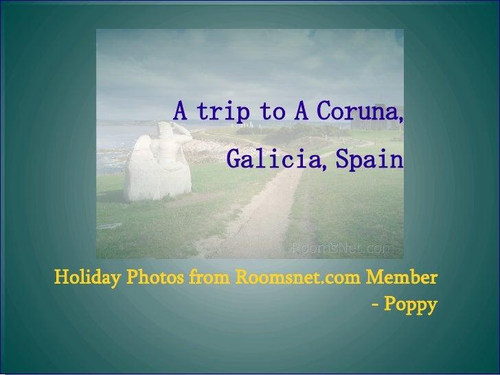 A trip to A Coruna, Galicia, Spain Holiday Photos from Roomsnet.com Member  - Poppy