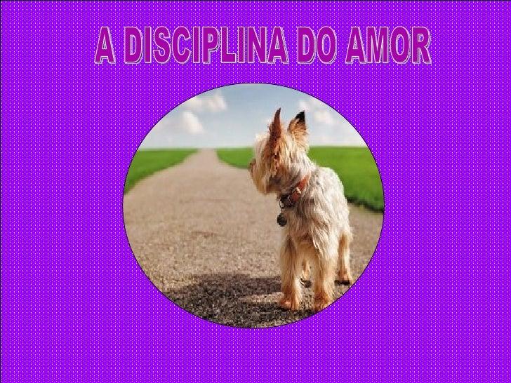 A DISCIPLINA DO AMOR