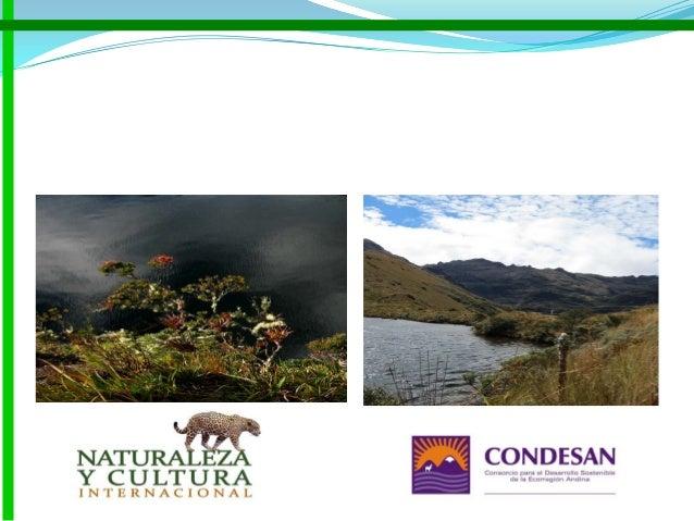 Proyecto de Adaptación al impacto del retroceso acelerado de glaciares en los Andes Tropicales - PRAA (Comunidad Andina de...