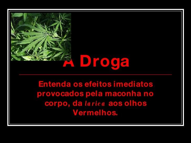 A Droga Entenda os efeitos imediatos provocados pela maconha no corpo, da  larica  aos olhos Vermelhos.