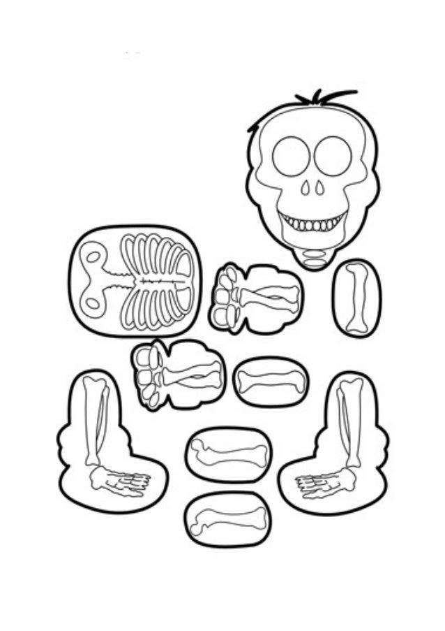 A esqueleto recortar y reconstituir laurence