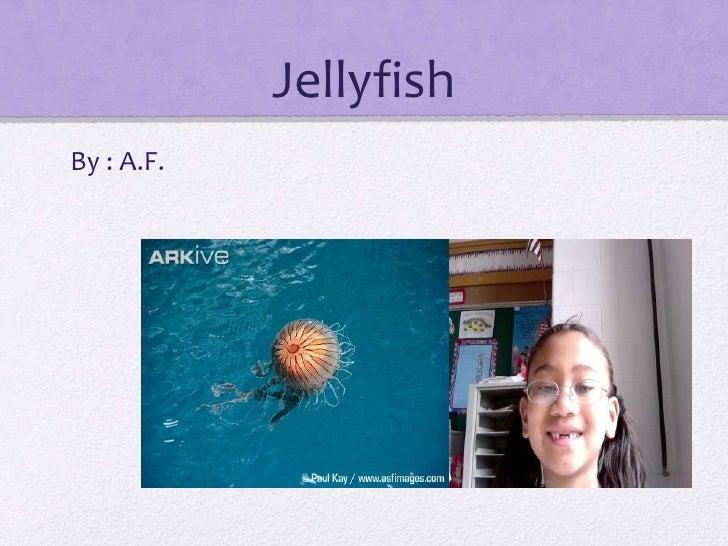 Jellyfish <br />By : A.F.<br />