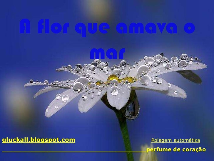 A flor que amava o            margluckall.blogspot.com                    Rolagem automática______________________________...