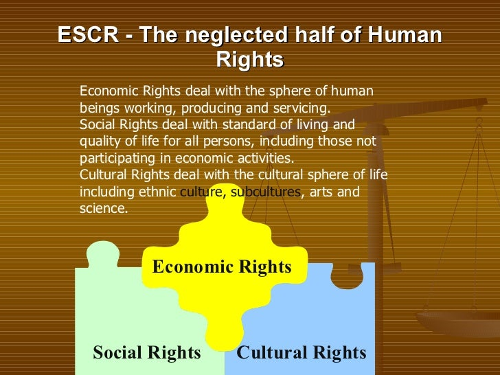 an introduction to the political social and economical development of human beings Does gdp capture everything we care about in an economy  introduction   rising, the standard of living could be falling if human health, environmental  cleanliness,  dangerously susceptible to manipulation to suit political/ economical/social  is the human development index (hdi) a better  measurement of standard of.