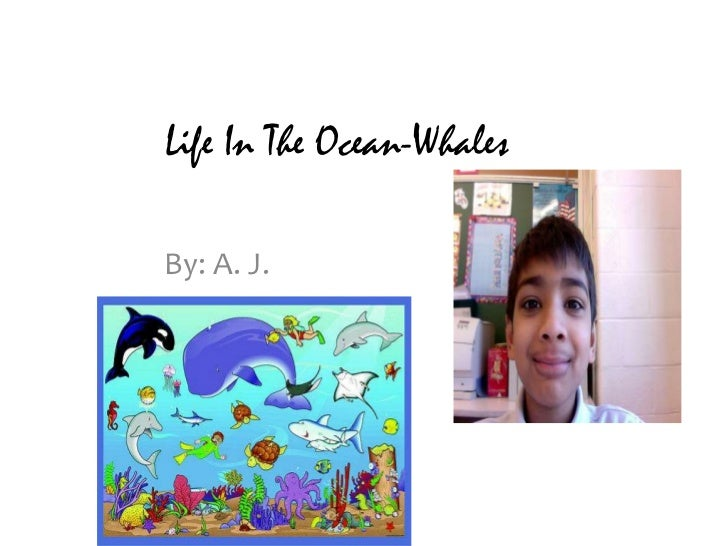 Life In The Ocean-Whales<br />By: A. J.<br />
