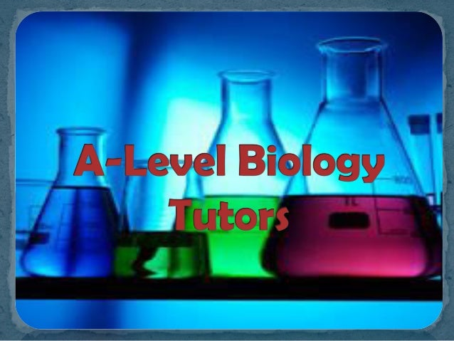 Online Biology Tutors Available Now
