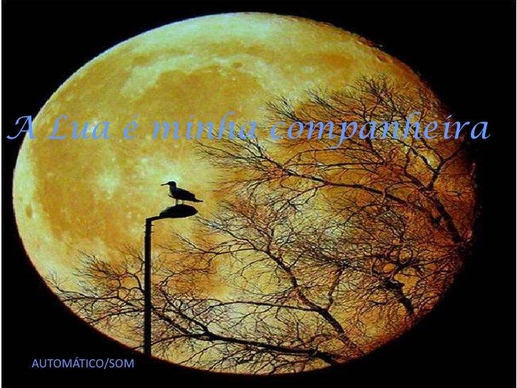 A Lua é minha companheira AUTOMÁTICO/SOM