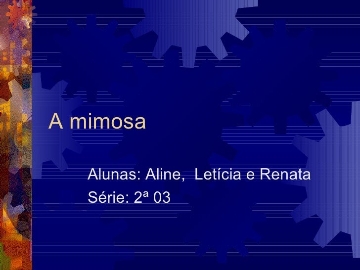 A mimosa Alunas: Aline,  Letícia e Renata Série: 2ª 03