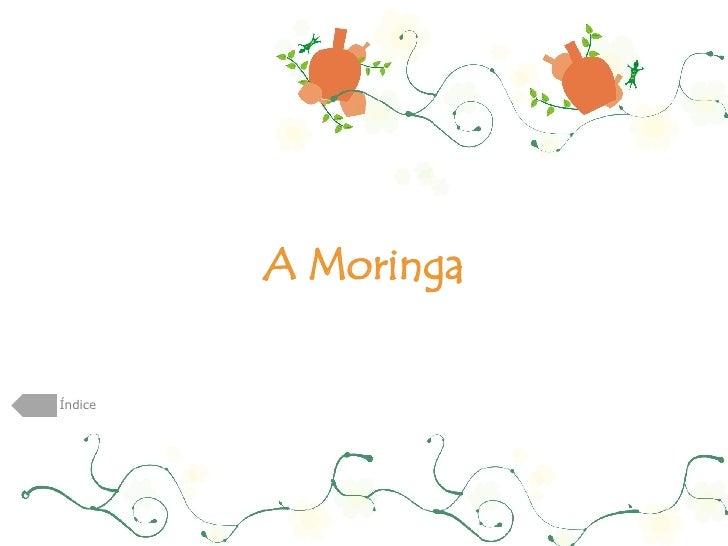 A Moringa Índice