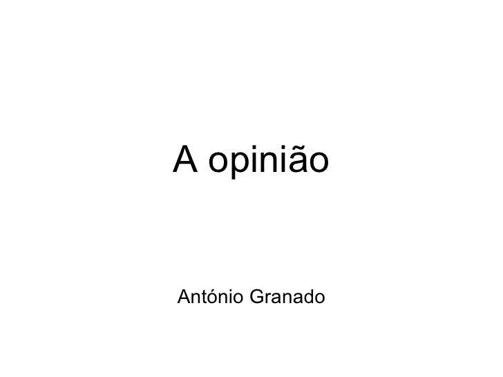 A opinião António Granado