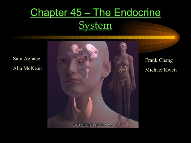 Chapter 45 – The Endocrine  System Sara Aghaee Alia McKean Frank Chang Michael Kwett