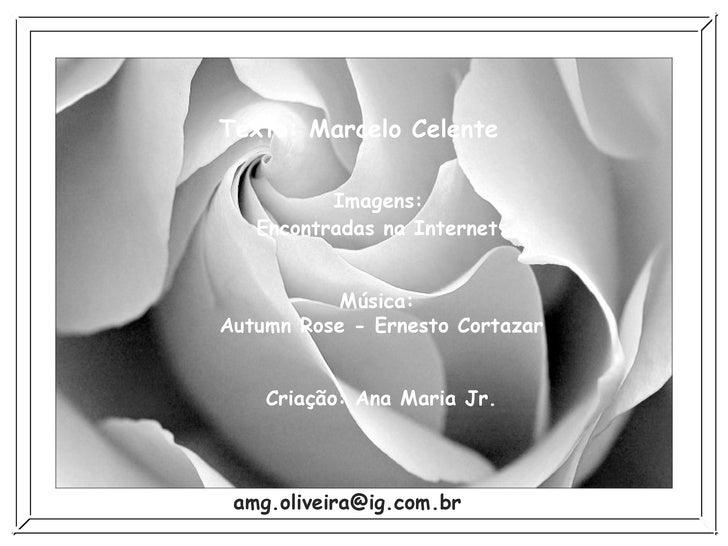 14.08.06 Sair Texto: Marcelo Celente  Imagens:  Encontradas na Internet Música:  Autumn Rose - Ernesto Cortazar Criação: A...