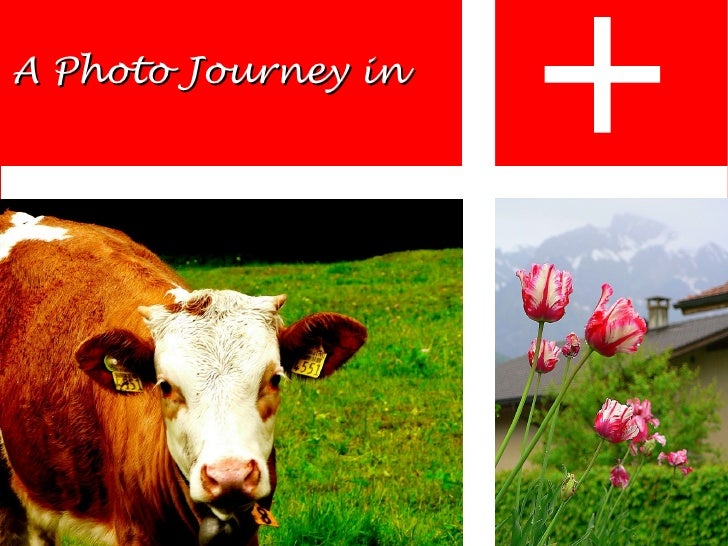 A Photo Journey in
