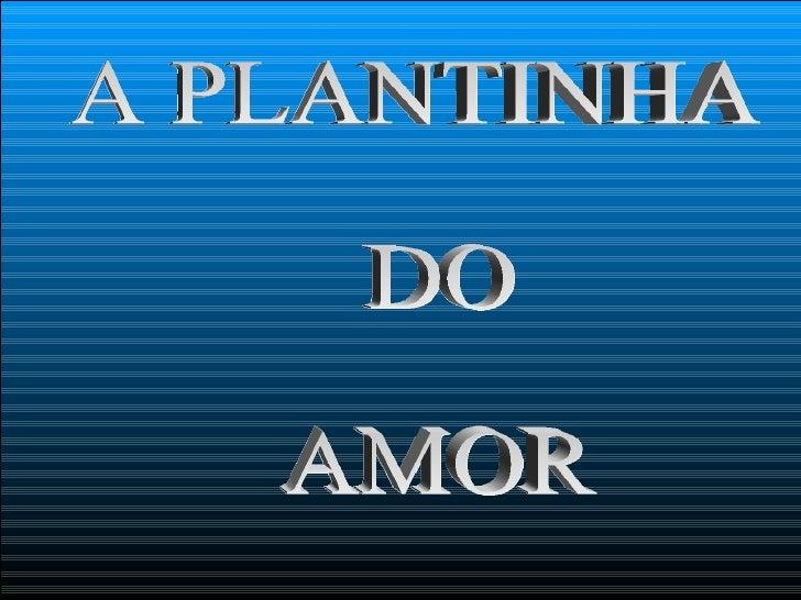 A PLANTINHA  DO  AMOR