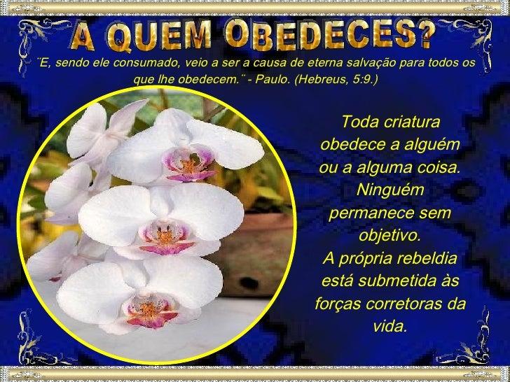¨E, sendo ele consumado, veio a ser a causa de eterna salvação para todos os                  que lhe obedecem.¨ - Paulo. ...