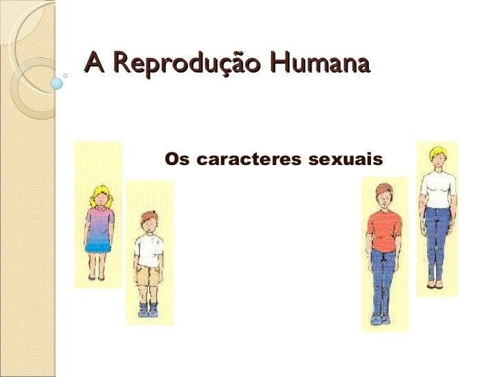 A Reprodução Humana Os caracteres sexuais