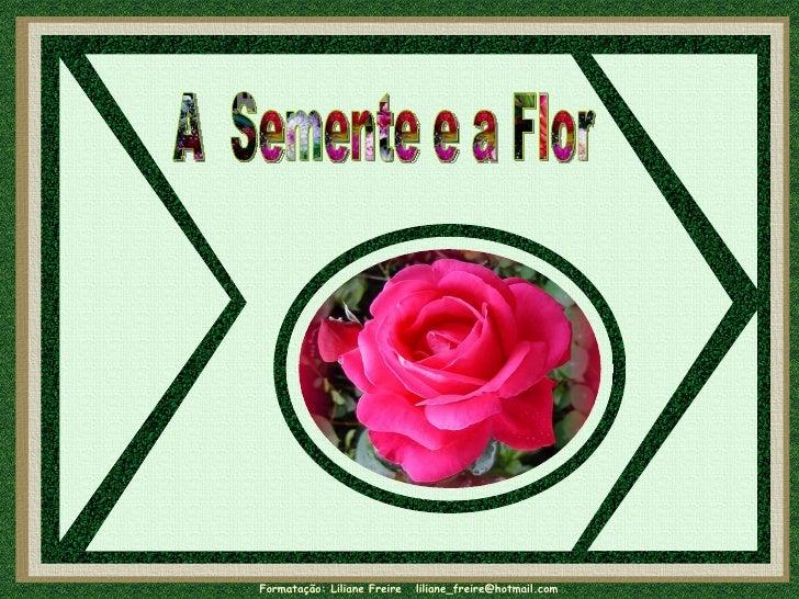 A  Semente e a Flor