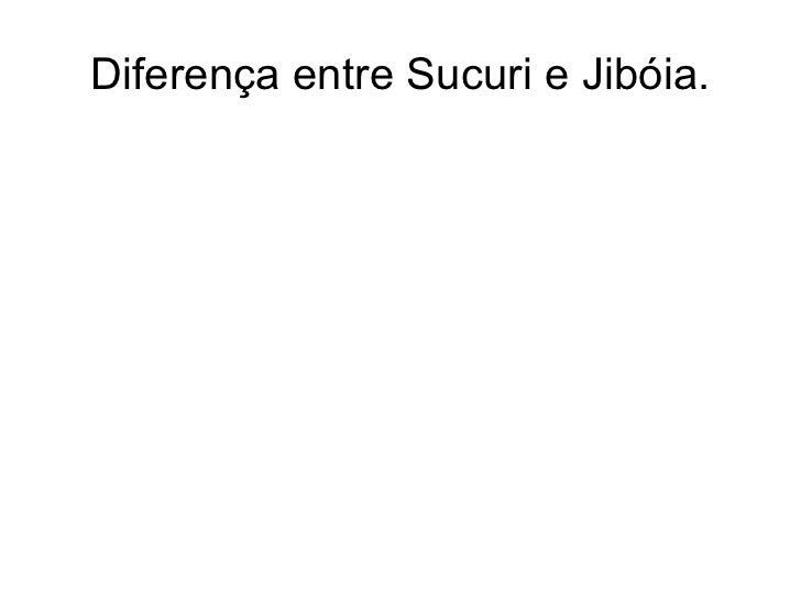 Diferença entre Sucuri e Jibóia.