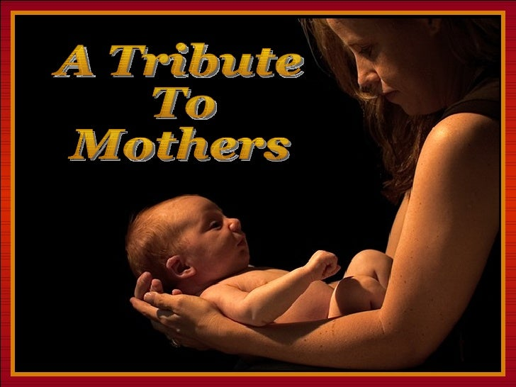 ♫  Turn on your speakers! CLICK TO ADVANCE SLIDES Tommy's Window Slideshow A Tribute To Mothers