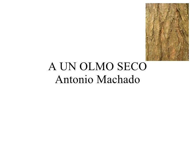A UN OLMO SECO Antonio Machado
