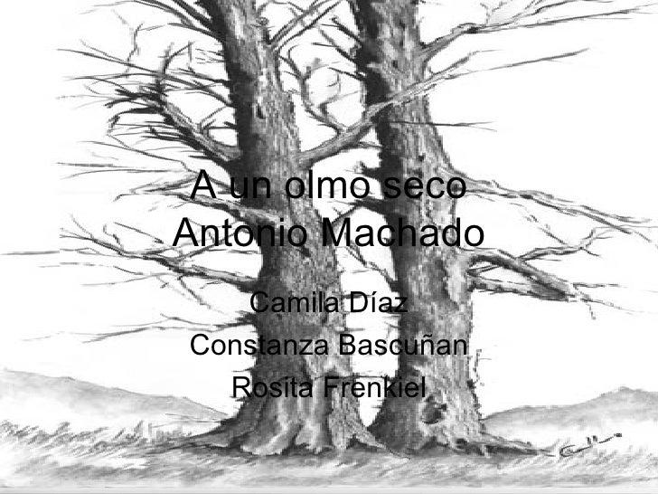 A un olmo seco Antonio Machado Camila Díaz Constanza Bascuñan Rosita Frenkiel
