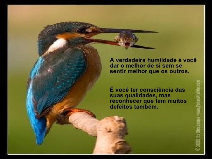 A verdadeira humildade é você dar o melhor de si sem se sentir melhor que os outros.  É você ter consciência das suas qual...
